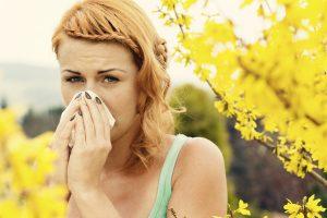 quercétine allergies